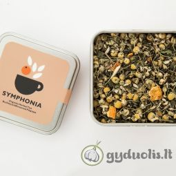 Agavų sirupas, ekologiškas, NaturGreen, 495 g